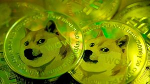 Dogecoin perde il 30%