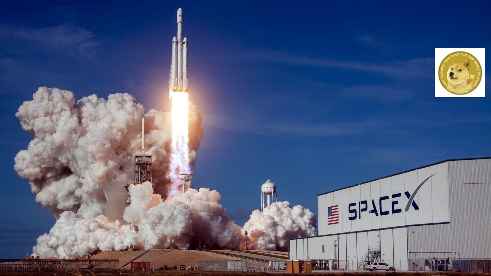 SpaceX lancerà un satellite di nome Doge-1