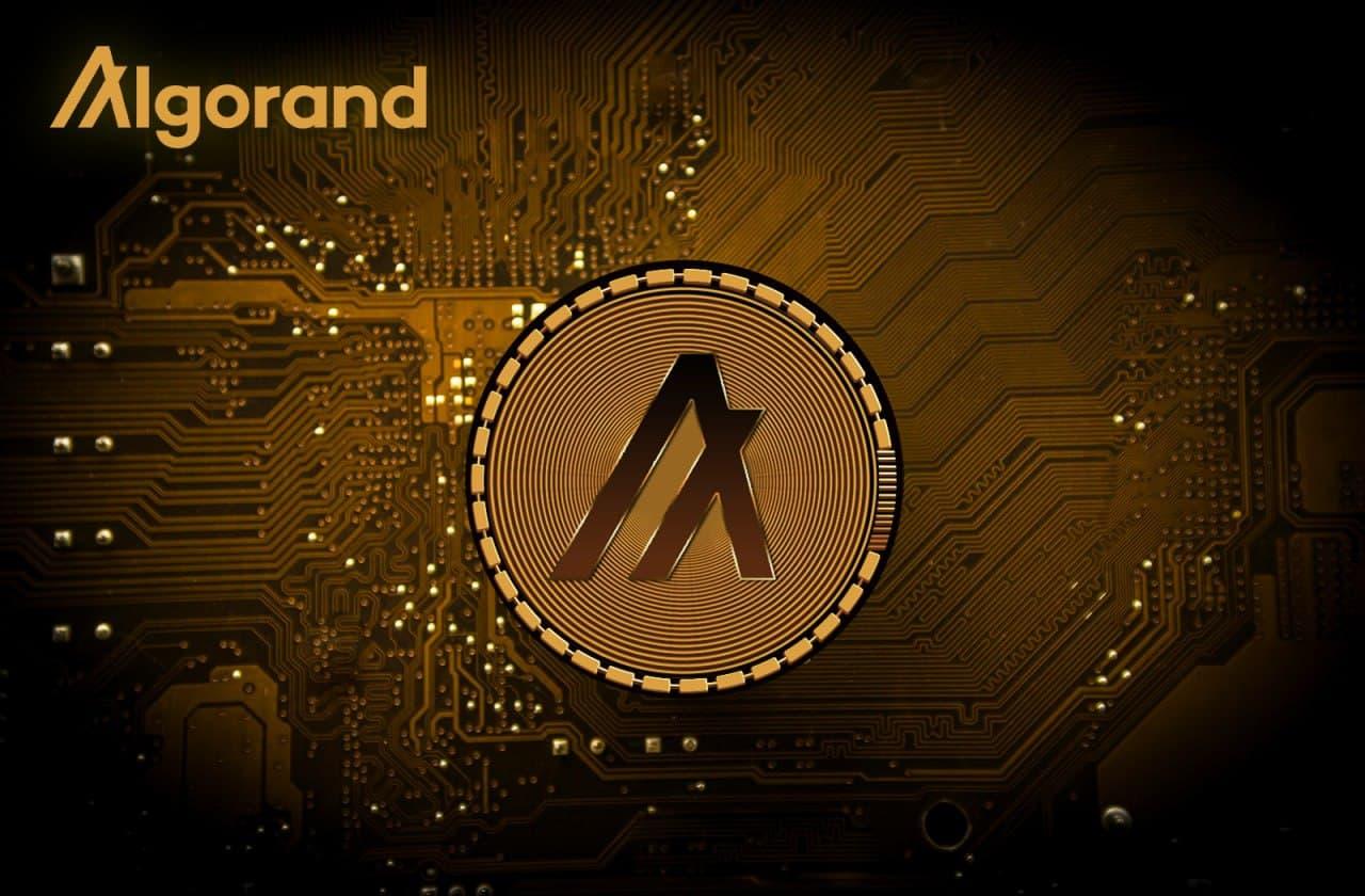 Migliori wallet per Algorand